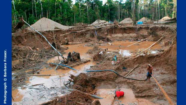 Klondike-style gold rush in Peru's southern jungle threatens carbon offset deals