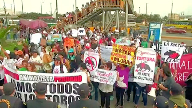 Anti-bullfighting activists in Lima demand an end to the traditional blood sport