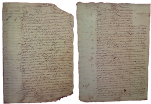 Pedro Manuel pisco will and testament, the oldest documentary evidence of Pisco liquor