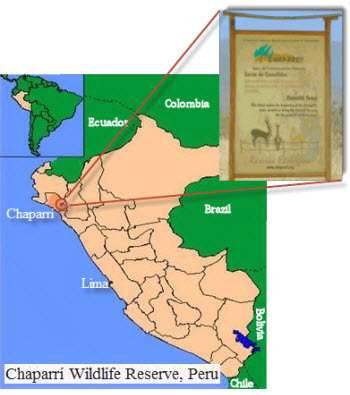 Chaparri Reserve, in the Tumbes region of Lambayeque, Peru