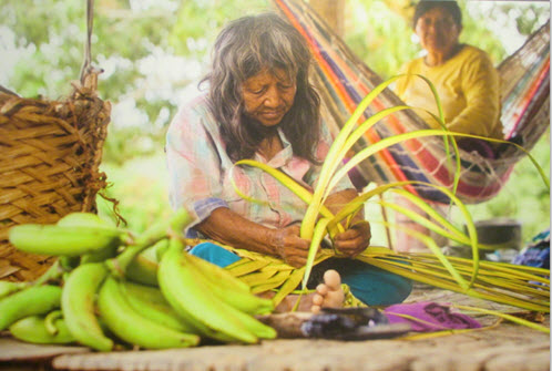 Traditional customs in the Amazon rain forest - weaving