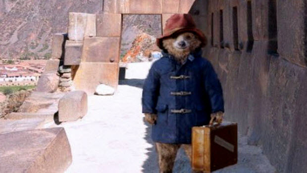 Paddington Bear's Peru Tour includes COP20 appearance