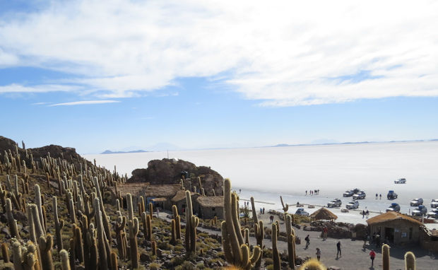 Situated in the middle of Salar de Uyuni, the Isla Incahuasi is an cactus oasis with amazing panoramic views of the Bolivian altiplano.