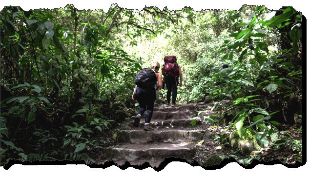 The Inca Trail trek to Machu Picchu - Photo: by Federico Matias Barreña