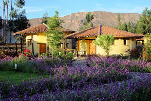 Sol y Luna Lodge bungalow
