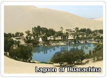 lagoon Huacachina -  Ica