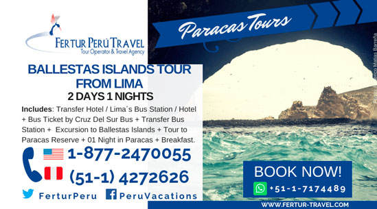 Ballestas Islands Tour From Lima: 2 Days 1 Night