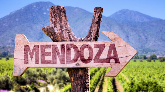 Mendoza Wine Camp