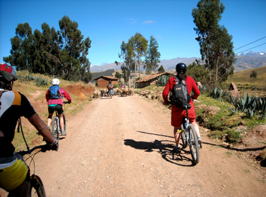 Peru Mountain Bike Tour - Fertur Peru Travel