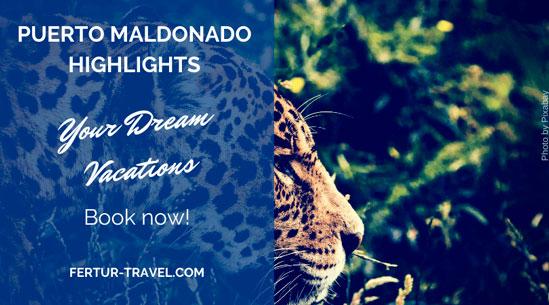 Puerto Maldonado Highlights: Best Lodges & Wildlife Safari